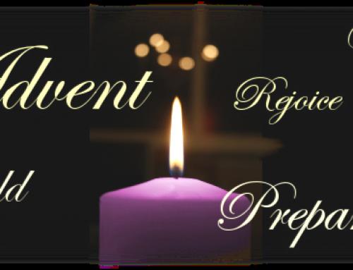 Advent Reflection–Thursday 8 December 2016